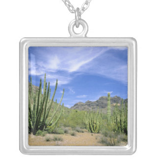 Desert cactus at Organ Pipe National Monument, Silver Plated Necklace