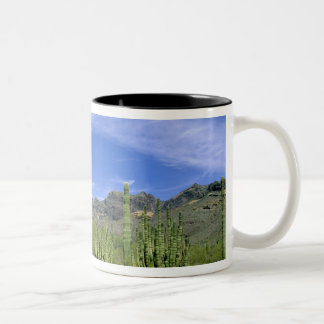 Desert cactus at Organ Pipe National Monument, Two-Tone Coffee Mug