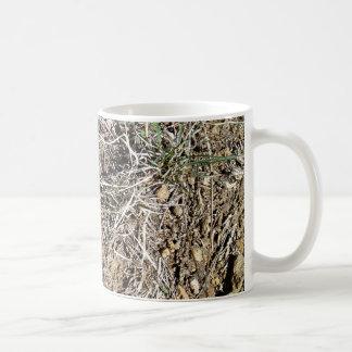 Desert Cactus Daisy Classic White Coffee Mug