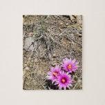 Desert Cactus Daisy Jigsaw Puzzles