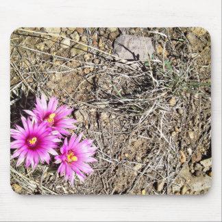 Desert Cactus Daisy Mouse Pad