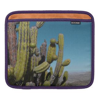 Desert Cactus iPad Sleeve