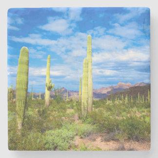 Desert cactus landscape, Arizona Stone Coaster
