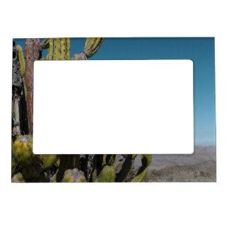 Desert Cactus Magnetic Photo Frame