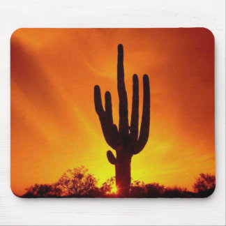 Desert Cactus Mouse Pads