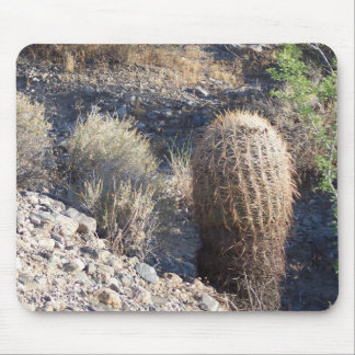 Desert Cactus Mouse Pad