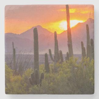 Desert cactus sunset, Arizona Stone Coaster