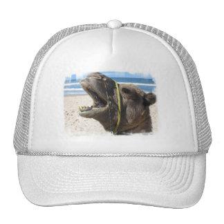 Desert Camel Baseball Hat