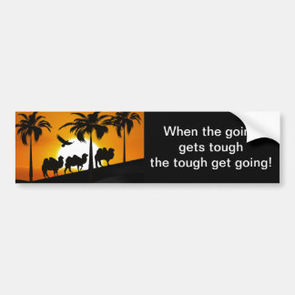 Desert Camels at sunset Bumper Sticker