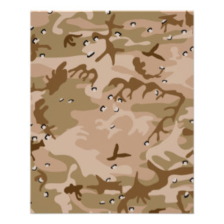 Desert Camouflage Flyer
