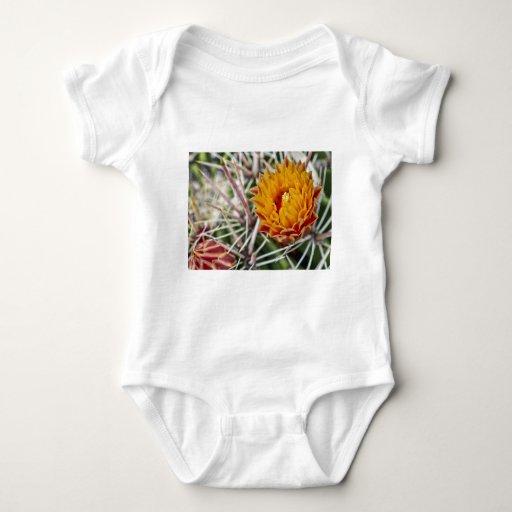 Desert Color II Baby Bodysuit