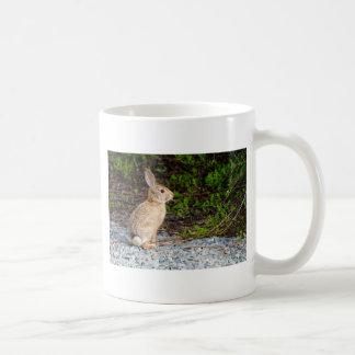 Desert Cottontail Rabbit Coffee Mug
