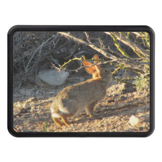 Desert Cottontail Rabbit Hitch Cover