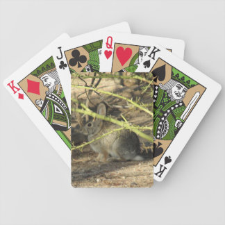 Desert Cottontail Rabbit Playing Cards