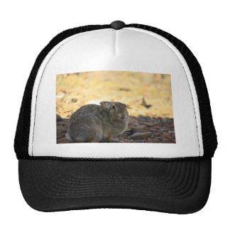 Desert Cottontail Rabbit Trucker Hat