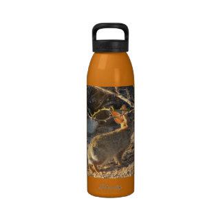 Desert Cottontail Rabbit Reusable Water Bottles