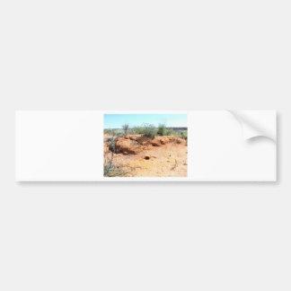 Desert Critter Dwellings in Red Sand Bumper Sticker