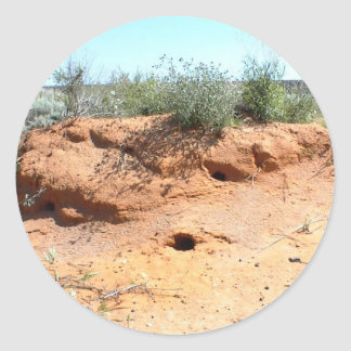 Desert Critter Dwellings in Red Sand Classic Round Sticker