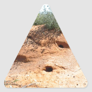 Desert Critter Dwellings in Red Sand Triangle Sticker