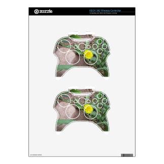 Desert Dandelion 3 Xbox 360 Controller Skins