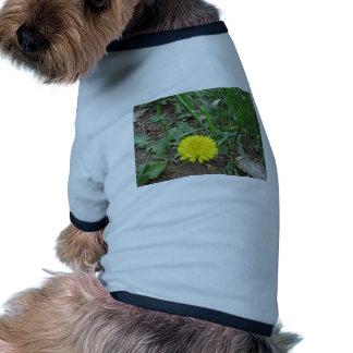 Desert Dandelion 5 Dog T-shirt