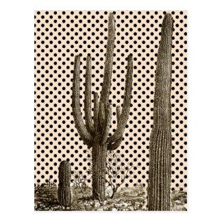 Desert diva postcard