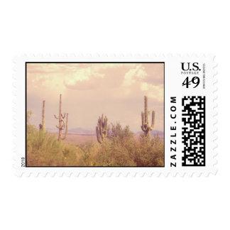 Desert Dream stamps