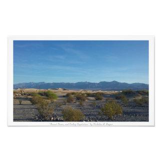 """""""Desert Dunes and Valley Vegatation,"""" Desert Photo Print"""