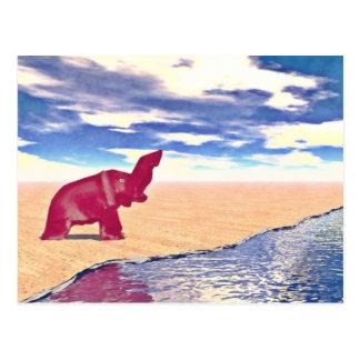 Desert Elephant Quest For Water Postcard