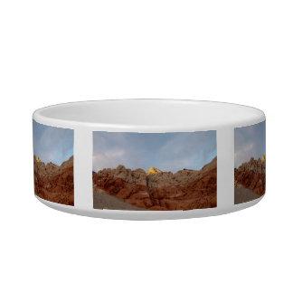 Desert Floor to Ceiling Bowl