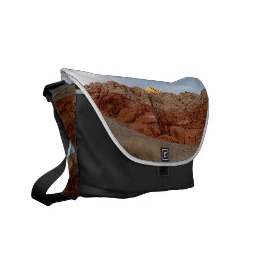 Desert Floor to Ceiling Courier Bags