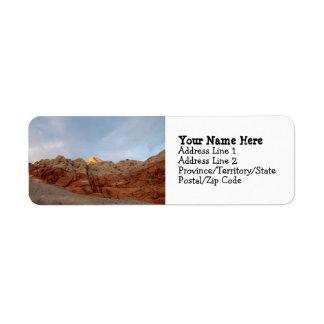 Desert Floor to Ceiling Label