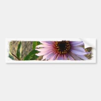 Desert Flower Bumper Sticker