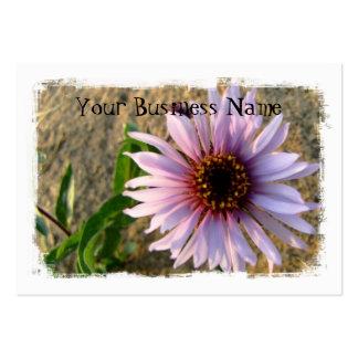 Desert Flower Large Business Cards (Pack Of 100)