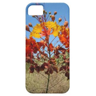Desert Flower iPhone SE/5/5s Case