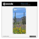 Desert Flowers iPhone 4 Skins