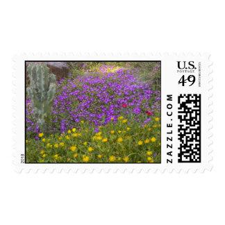 Desert Flowers Postage