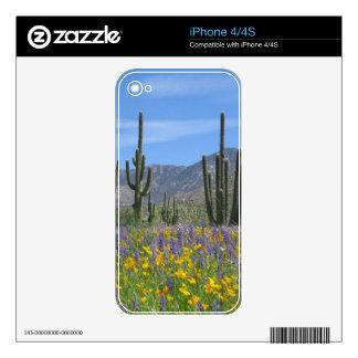 Desert Flowers iPhone 4S Decals