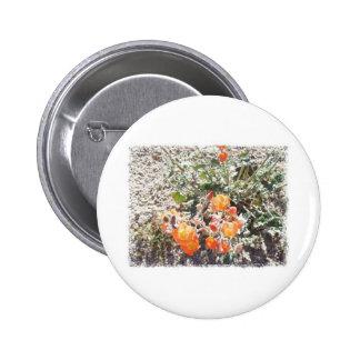 Desert Globemallow Button
