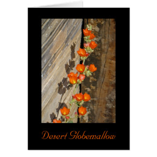 Desert Globemallow Greeting Card