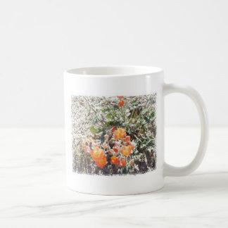 Desert Globemallow Mugs