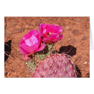 Desert Glow Card