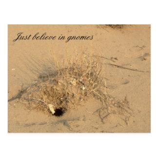 Desert Gnomes Postcard