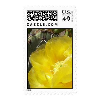 Desert Gold (1) Postage Stamps
