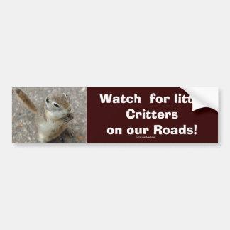 Desert Ground Squirrel Animal Motivational Bumper Sticker