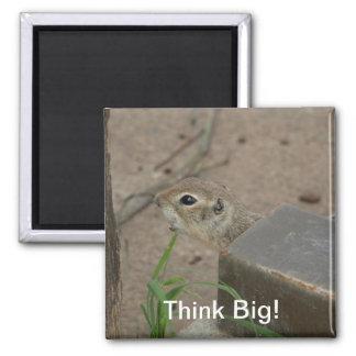 Desert Ground Squirrel Animal Motivational Magnet