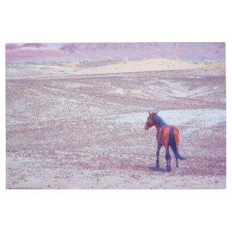 Desert Horse P8640 Metal Print