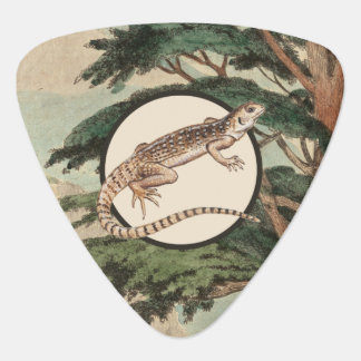 Desert Iguana In Natural Habitat Illustration Guitar Pick