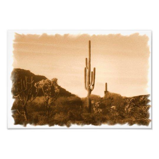 desert in sepia photo print