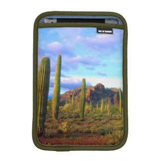 Desert in springtime sleeve for iPad mini